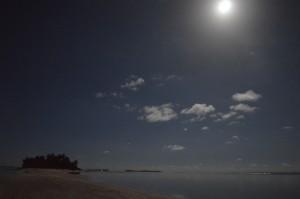 lune tauna